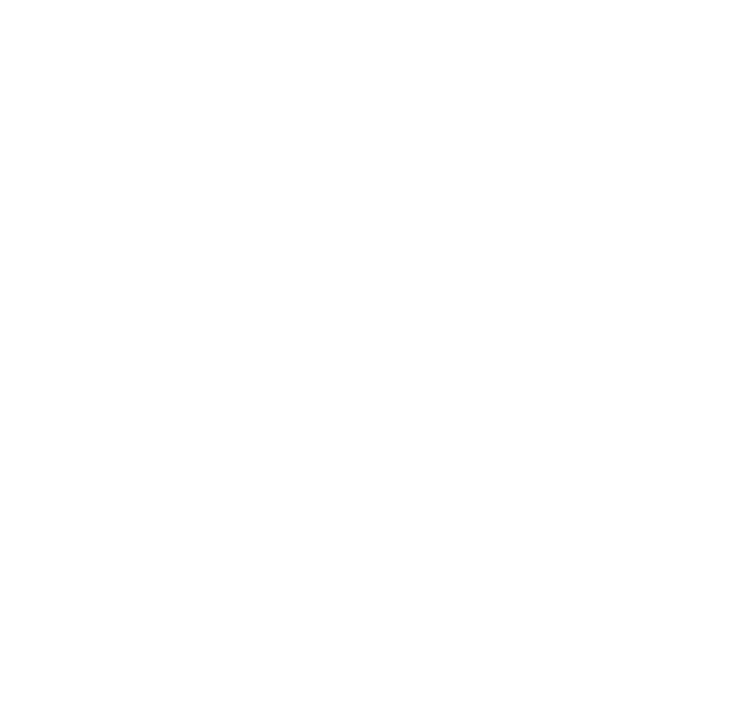Anahata Project 19